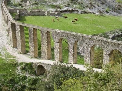 אקוודוקט באלבניה פרות