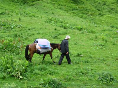 מקומי עם סוס - גאורגיה