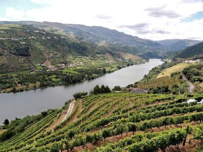 עמק הדואורו פורטוגל