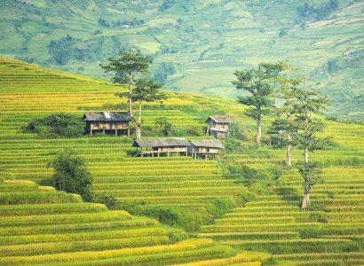 כפר בקמבודיה