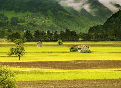 נוף שוויצרי