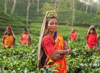 פועלת בשדה בהודו