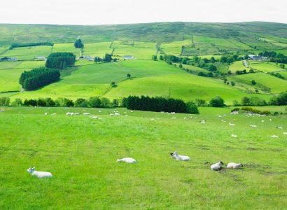 הרים בצפון אירלנד