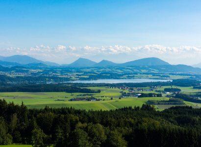 טאנברג אוסטריה